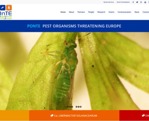 POnTE website home page