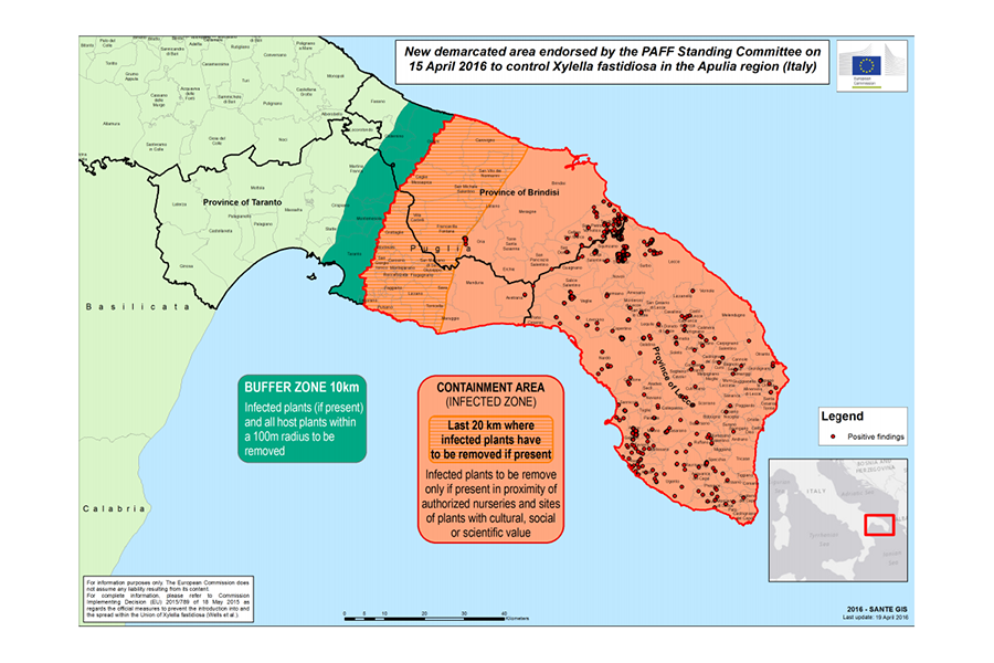 New demarcated area to control X. fastidiosa in the Apulia Region