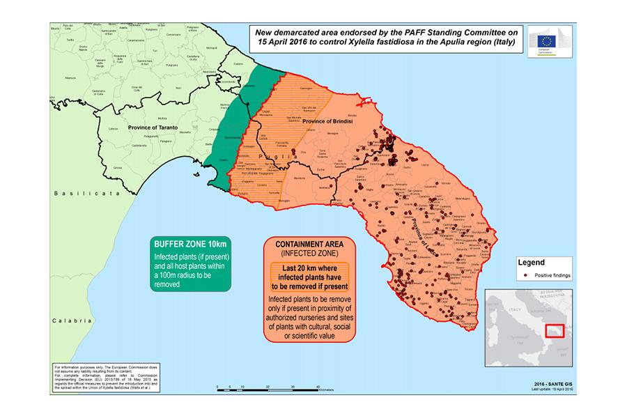 New demarcated area to control X. fastidiosa in the Apulia Region