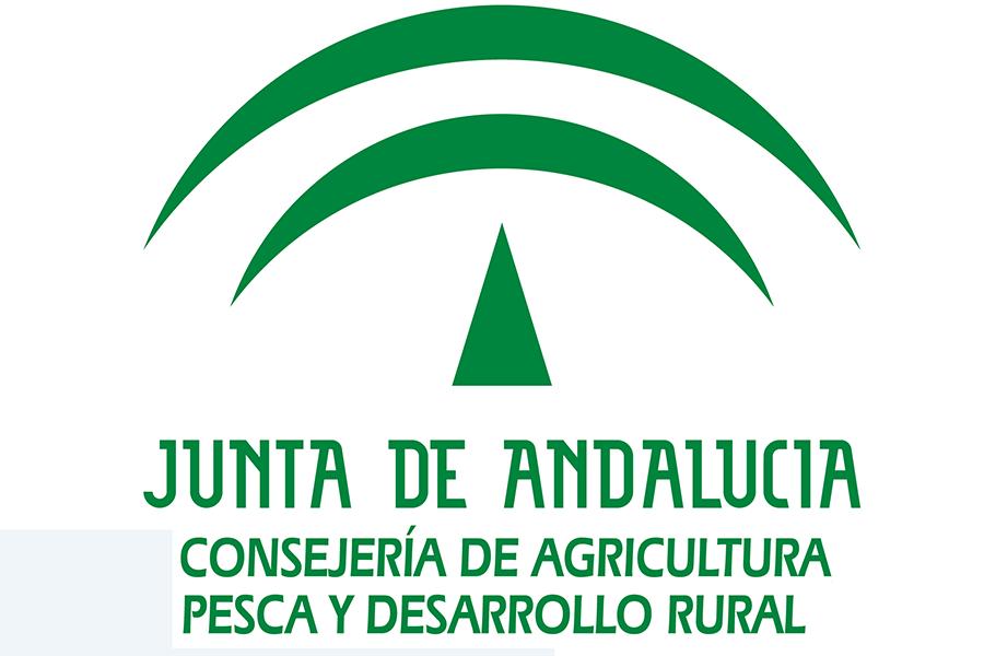 Home ponteproject for Oficina junta de andalucia