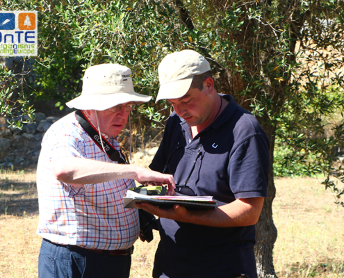 Dr. Navas-Cortés and Dr. Montes-Borrego (CSIC-IAS) during field monitoring in Salento, Apulia.