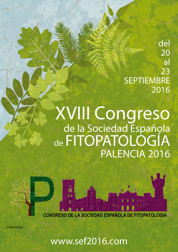 PALENCIA_CONGRESS
